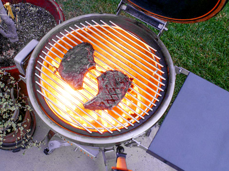 Caliber Thermashell Grill